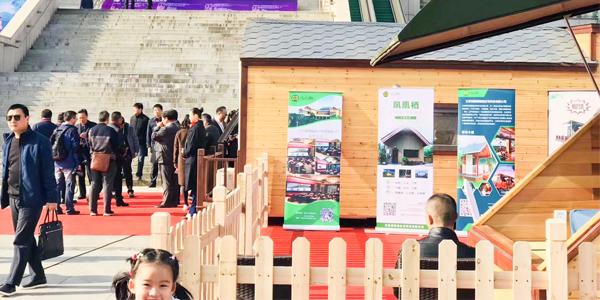 第一届南京水韵江南展览,省市旅游局领导点赞凤凰栖